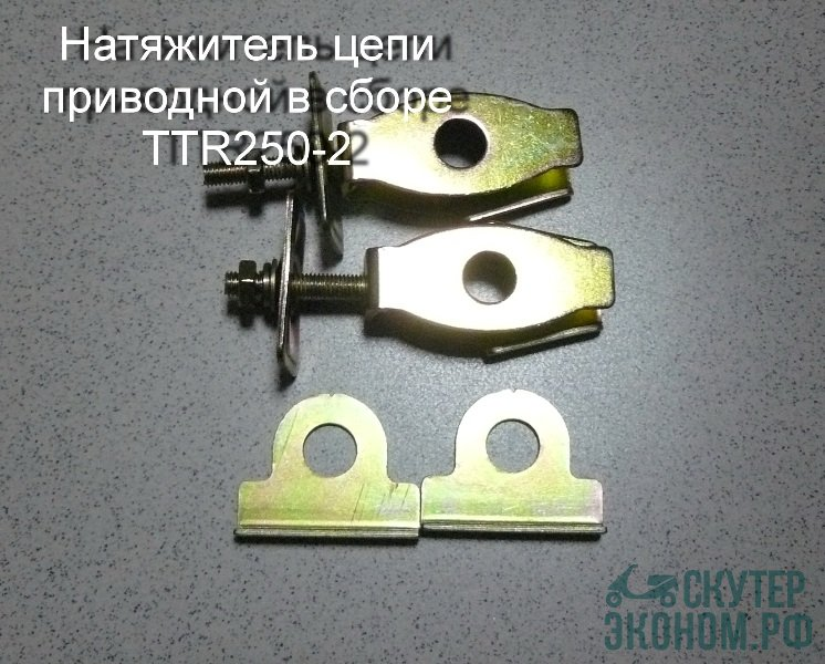 Натяжитель цепи приводной в сборе TTR250-2