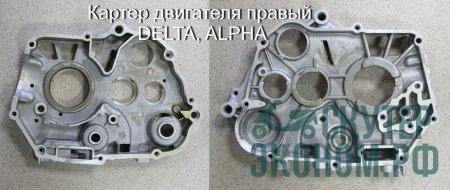 Картер двигателя правый DELTA, ALPHA, 125см3 ZS 154FMI-2 54*54