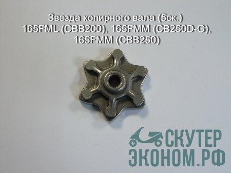 Звезда копирного вала (5ск.) 165FML (CBB200), 165FMM (CB250D-G), 165FMM (CBB250)