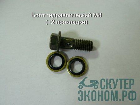 Болт гидравлический М8 (+2 прокладки)
