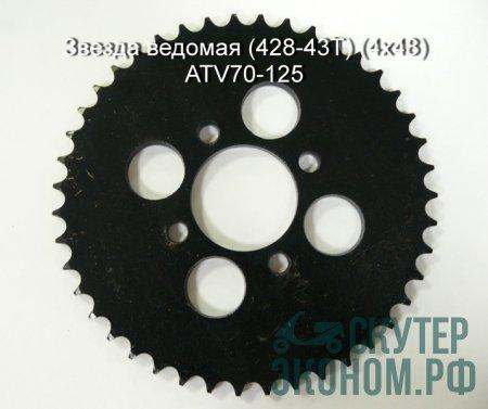 Звезда ведомая (428-43T) (4x48) ATV70-125